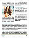 0000063534 Word Template - Page 4