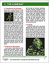 0000063537 Word Templates - Page 3