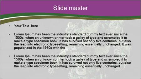 Green Robot PowerPoint Template - Slide 2