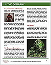 0000063541 Word Templates - Page 3