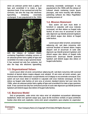 0000063543 Word Template - Page 4