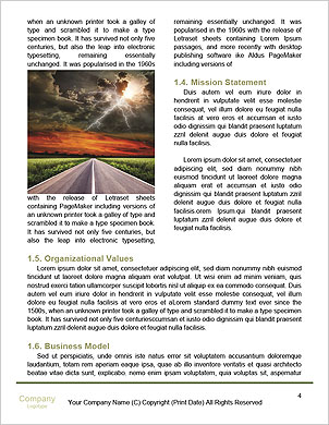 0000063547 Word Template - Page 4