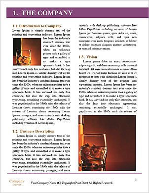 0000063548 Word Template - Page 3