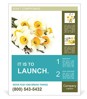 0000063560 Poster Templates