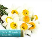 Bouquet of Narcissus PowerPoint Templates