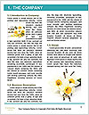 0000063560 Word Templates - Page 3