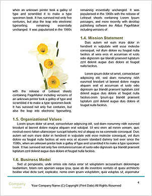0000063560 Word Template - Page 4