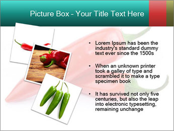 Two Hot Chili Peppers PowerPoint Template - Slide 17