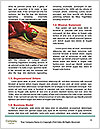 0000063561 Word Templates - Page 4