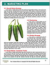 0000063561 Word Templates - Page 8