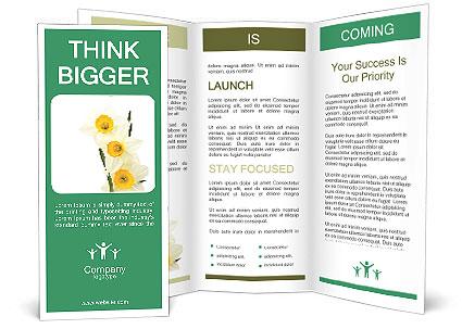 0000063571 Brochure Template
