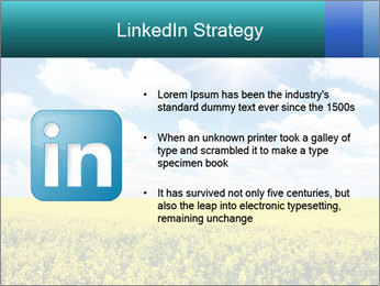 Sunny Sunflower Landscape PowerPoint Templates - Slide 12