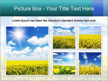 Sunny Sunflower Landscape PowerPoint Templates - Slide 19