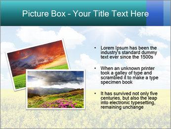 Sunny Sunflower Landscape PowerPoint Templates - Slide 20
