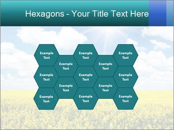 Sunny Sunflower Landscape PowerPoint Templates - Slide 44