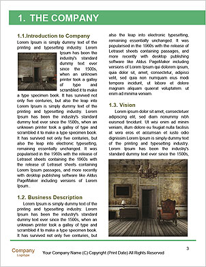 0000063584 Word Template - Page 3
