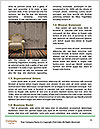 0000063584 Word Templates - Page 4