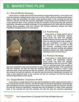 0000063584 Word Template - Page 8