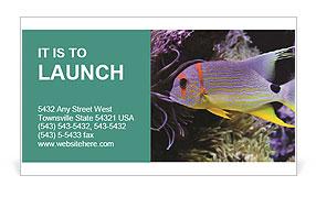 0000063585 Business Card Templates
