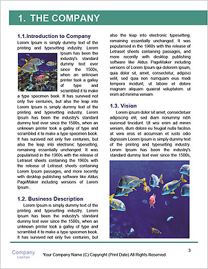 0000063585 Word Template - Page 3