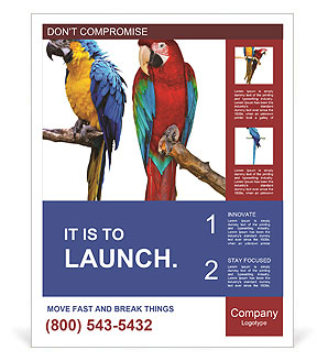 0000063594 Poster Template