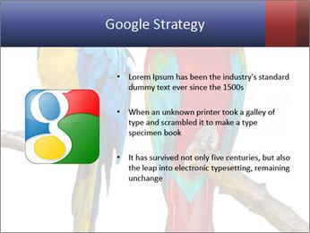 Big Ara Parrots PowerPoint Template - Slide 10
