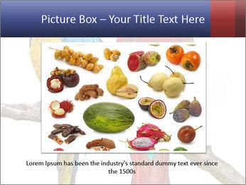 Big Ara Parrots PowerPoint Template - Slide 16