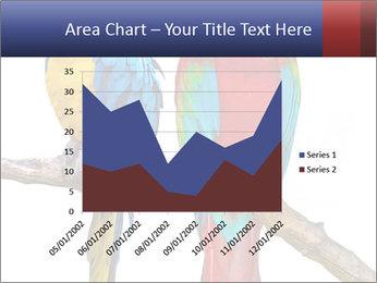 Big Ara Parrots PowerPoint Template - Slide 53