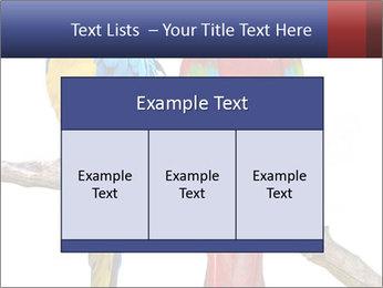 Big Ara Parrots PowerPoint Template - Slide 59