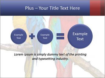 Big Ara Parrots PowerPoint Template - Slide 75