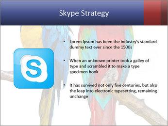 Big Ara Parrots PowerPoint Template - Slide 8