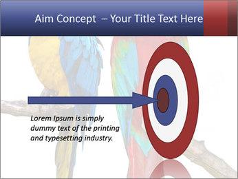Big Ara Parrots PowerPoint Template - Slide 83