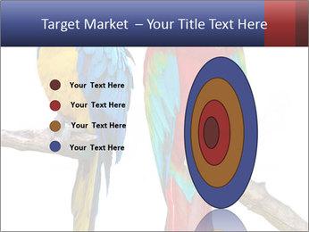 Big Ara Parrots PowerPoint Template - Slide 84