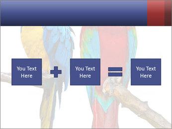 Big Ara Parrots PowerPoint Template - Slide 95