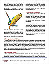 0000063594 Word Templates - Page 4