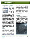 0000063598 Word Template - Page 3
