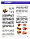 0000063599 Word Template - Page 3