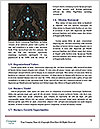 0000063622 Word Templates - Page 4