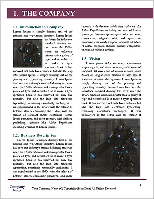 0000063623 Word Template - Page 3