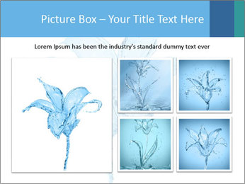 Blue Water Flower PowerPoint Templates - Slide 19