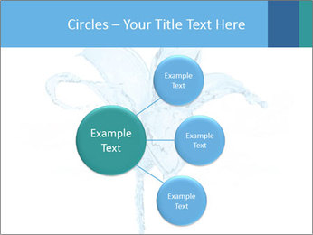 Blue Water Flower PowerPoint Templates - Slide 79