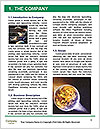 0000063653 Word Templates - Page 3