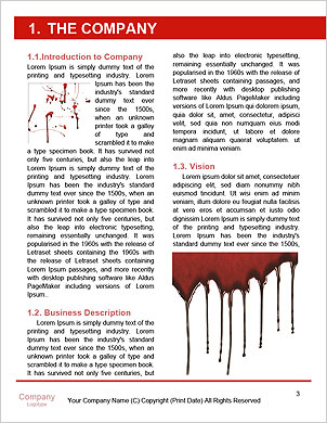 0000063656 Word Template - Page 3