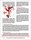 0000063656 Word Template - Page 4