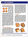 0000063659 Word Templates - Page 3
