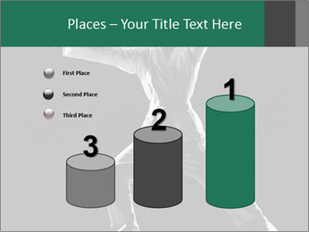 Silhouette of Martial Fighter PowerPoint Template - Slide 65