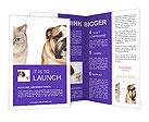 0000063675 Brochure Templates