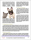 0000063675 Word Templates - Page 4