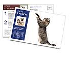 0000063677 Postcard Templates