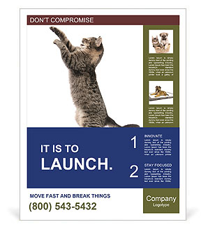 0000063677 Poster Templates